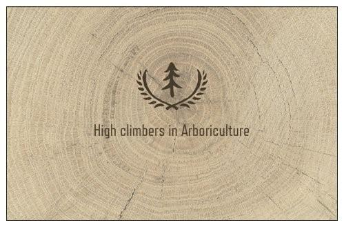 Tree Me logo