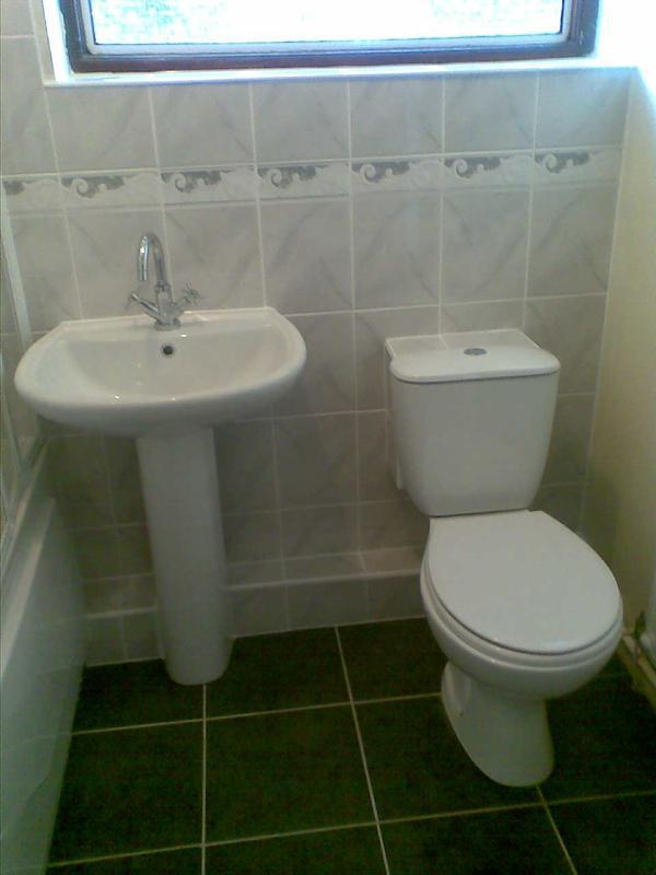 Image 1 - toilet, basin and tiling