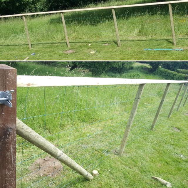 Image 15 - STOCK FENCING