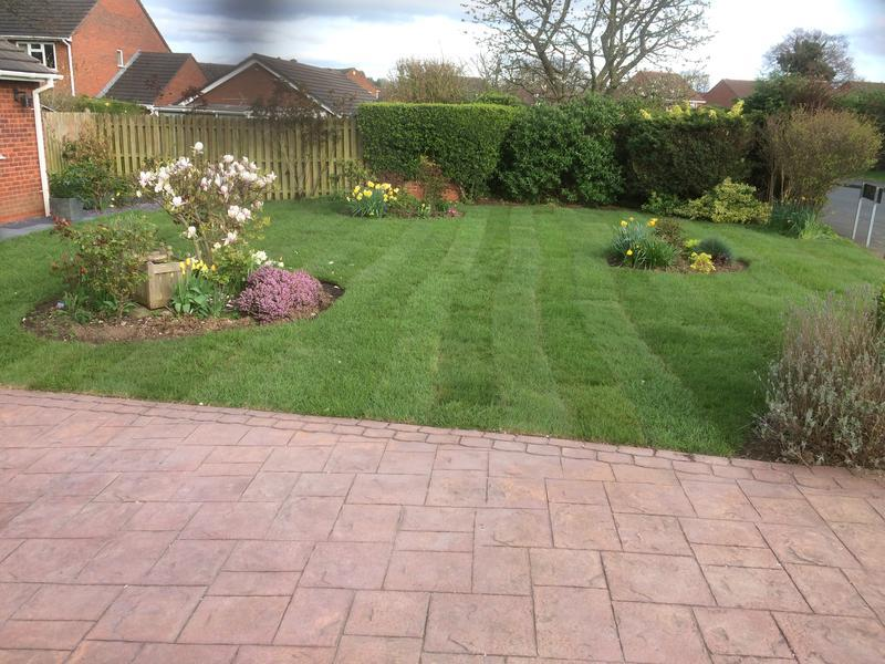 Image 29 - new lawn laid