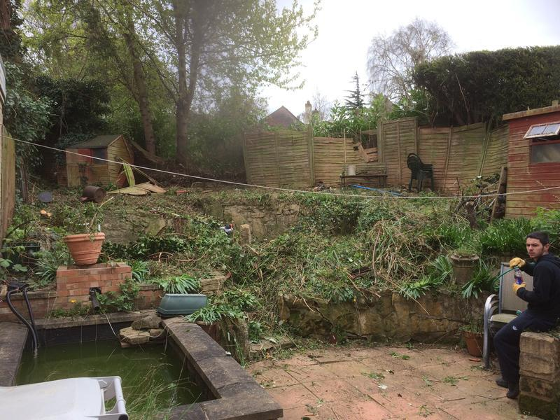 Image 21 - before clearing and fencing
