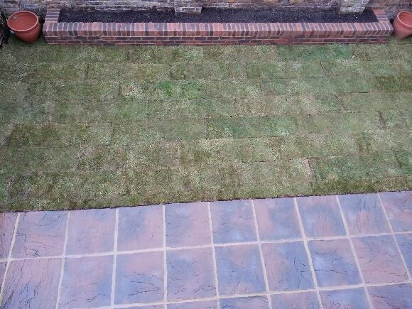 Image 28 - Finished fence, patio and grass