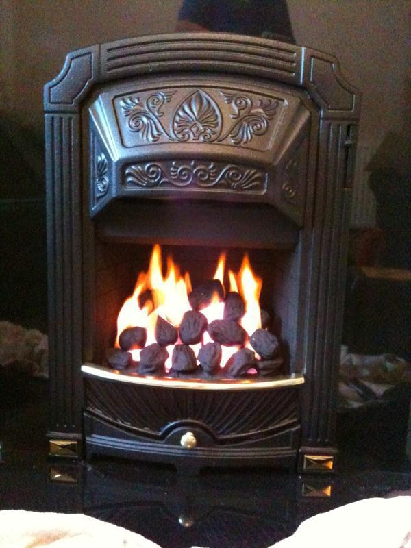 Image 17 - Inset Live Gas Fire