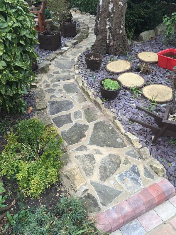 Image 245 - New path Canterbury
