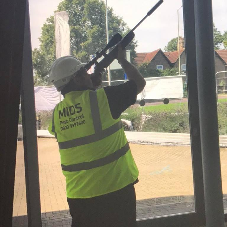 Image 7 - Control Shooting is just some of the stuff we can do at MIDS Pest Control
