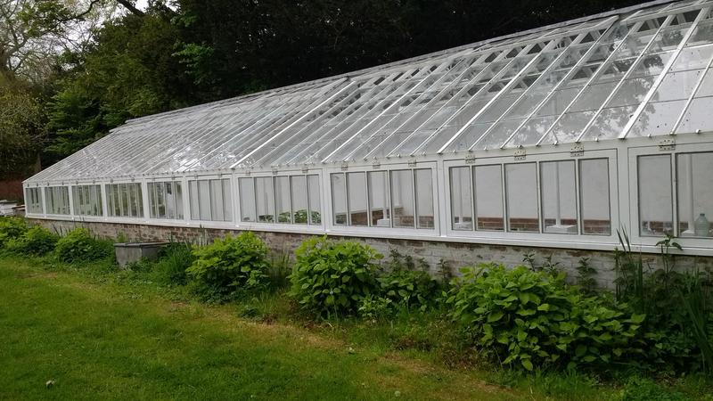 Image 7 - After -the greenhouse