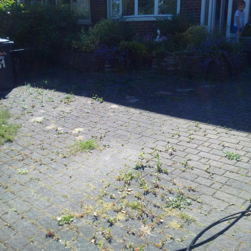 Image 9 - Front drive - pave prior to cleaning