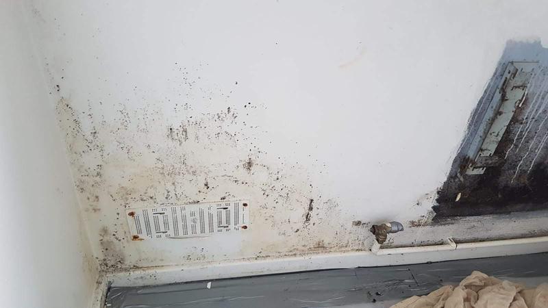 Image 58 - Intrusive damp survey
