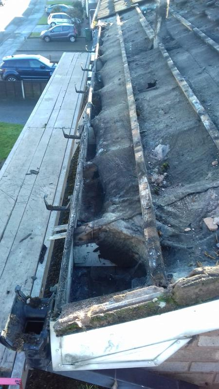 Image 11 - Old warn shrunk drip felt and roof batten i,e rotten Timbers