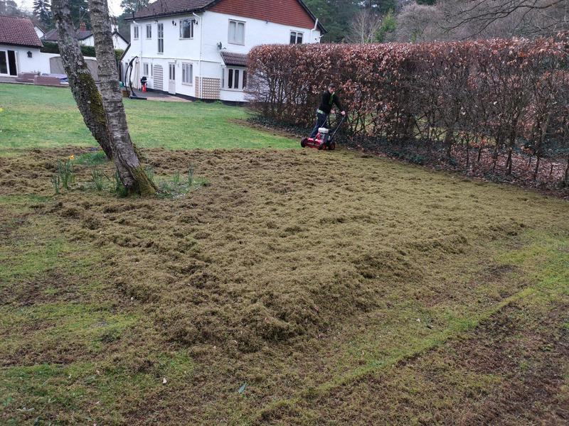 Image 45 - Scarification. (thatch and moss removal)