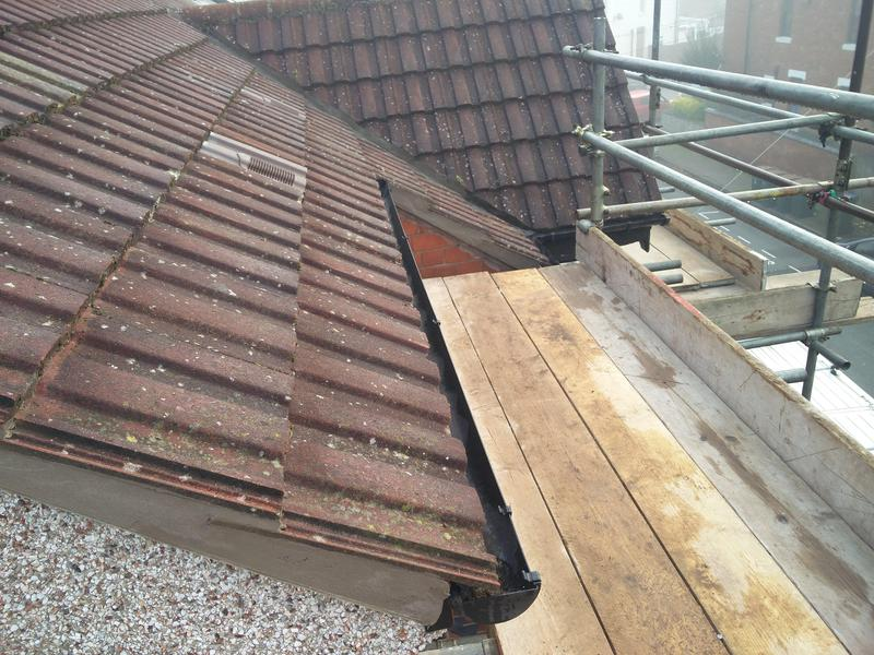 Image 41 - Main roof repairs from Squirrel damage, completed Oct 2019, Earlsdon