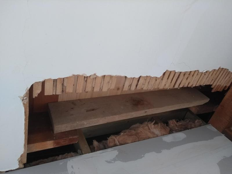 Image 4 - Damage to lath and plaster ceiling.