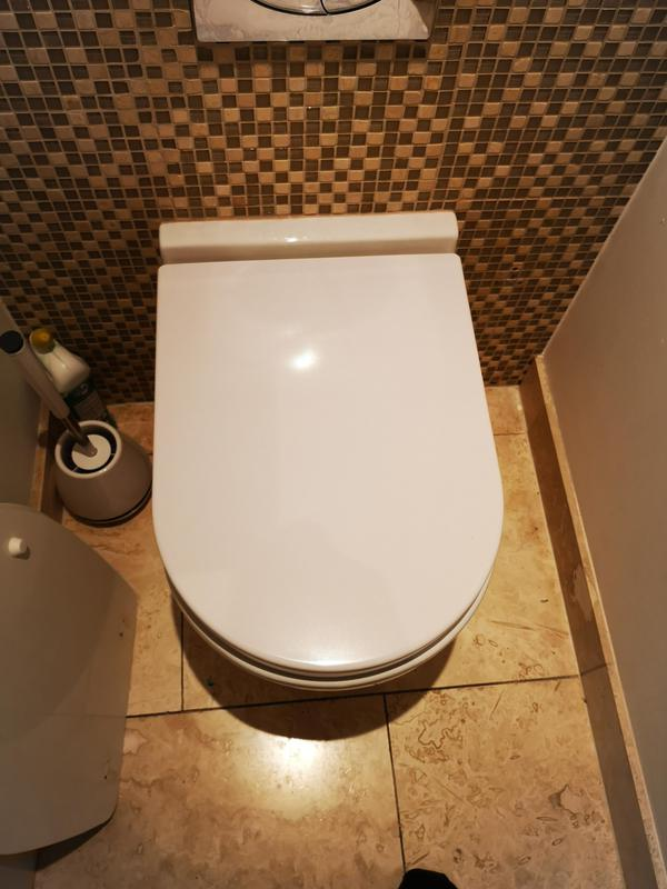 Image 16 - new wc seat Esher