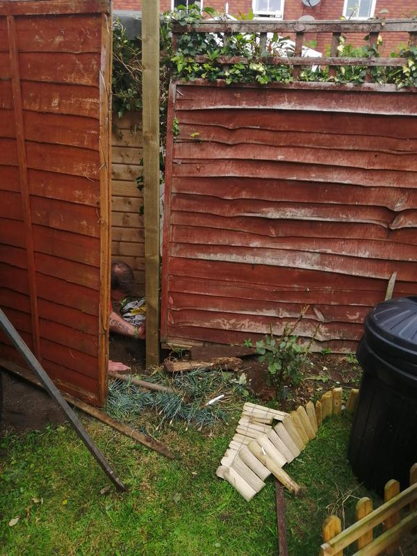 Image 125 - Fencing /trellis installation and repair