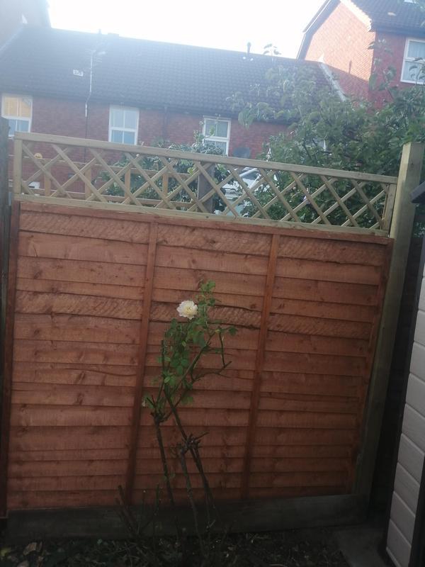 Image 124 - Fencing /trellis installation and repair