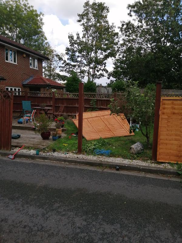 Image 121 - Fence /trellis repair and installation.