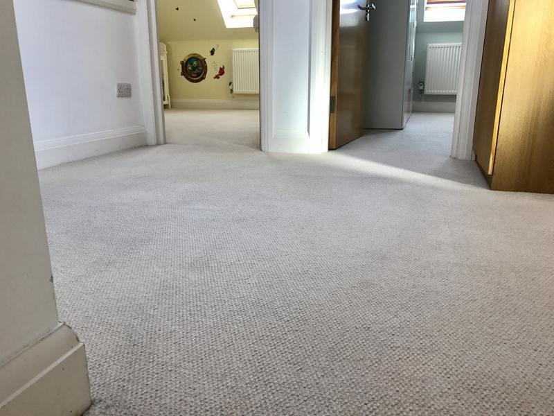 Image 32 - Domestic carpet steam cleaning
