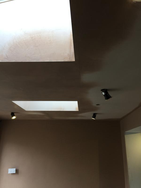 Image 28 - New extension with 2 velux sky lights