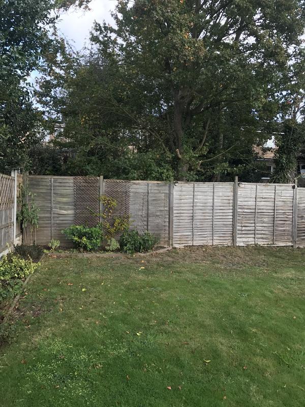 Image 42 - Fencing