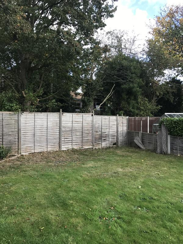 Image 43 - Fencing