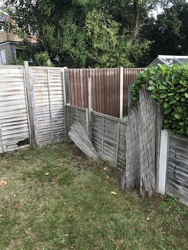 Image 44 - Fencing