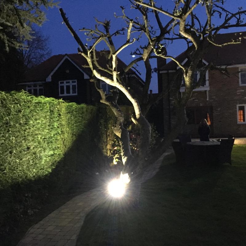 Image 4 - Installation of tree LED flood light.