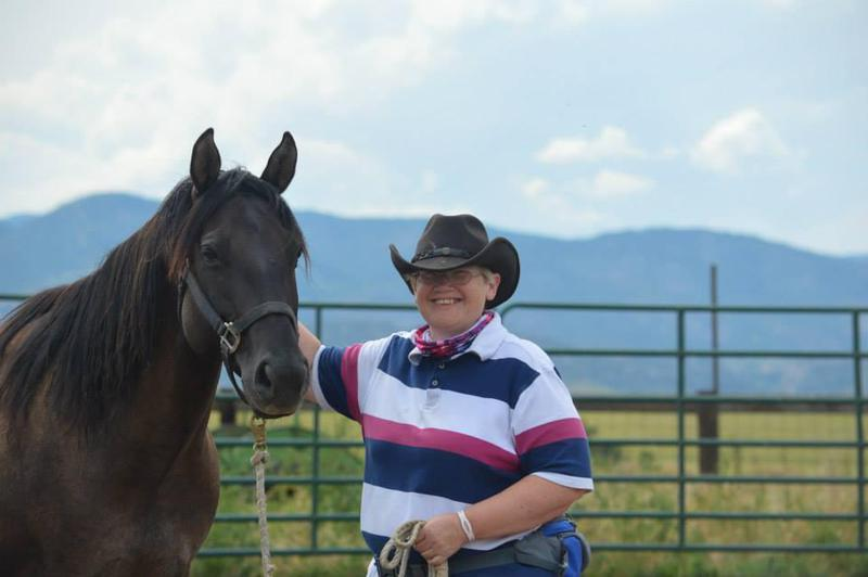 Image 3 - Working with horses in America - Rocky Mountains in the background.