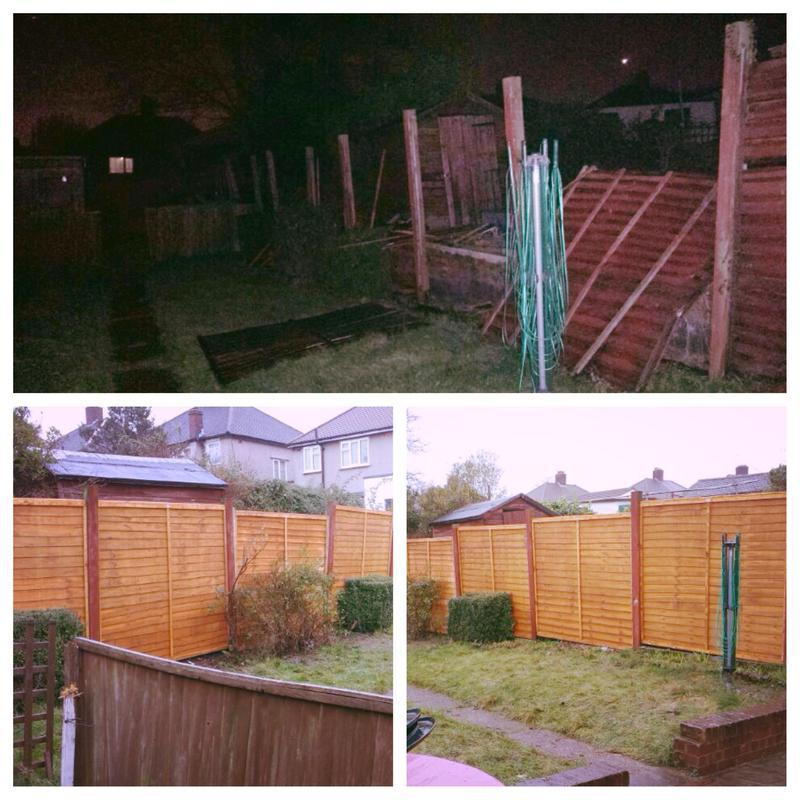 Image 11 - replaced fence panels