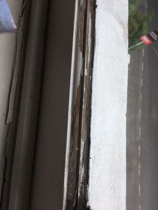 Image 20 - Blistered windows