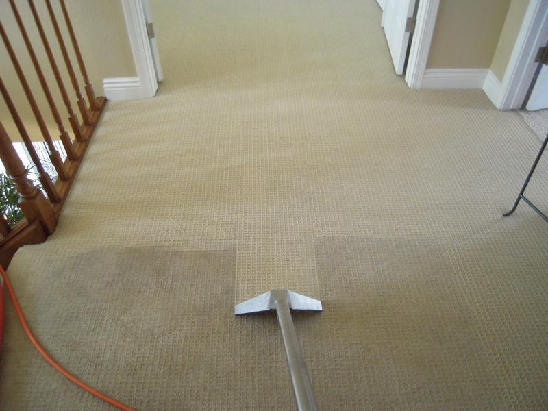 Image 8 - Landing carpet half way through cleaning process