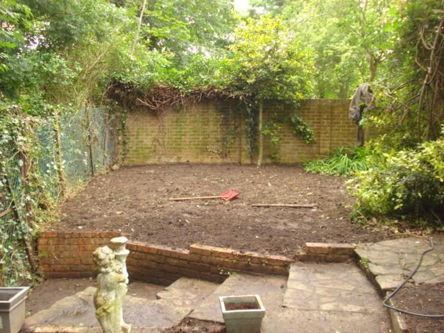 Image 48 - after over grown garden cleared