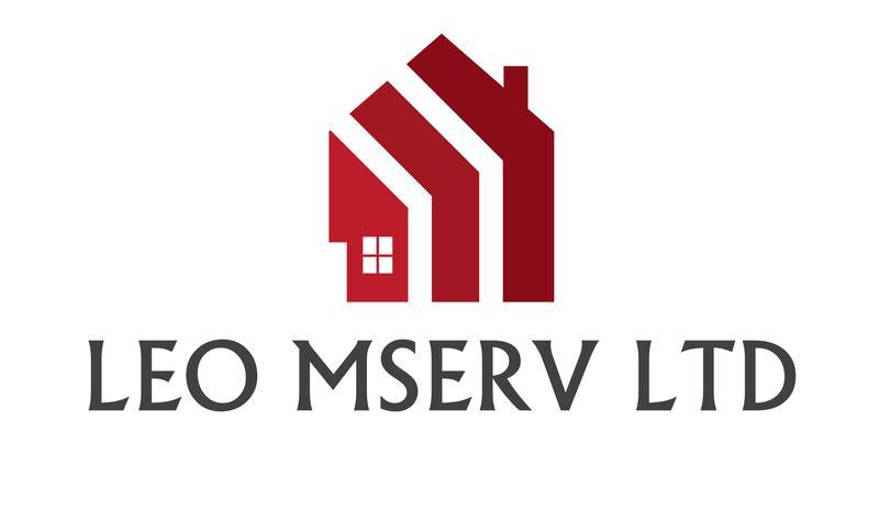 Leo Mserv Ltd logo