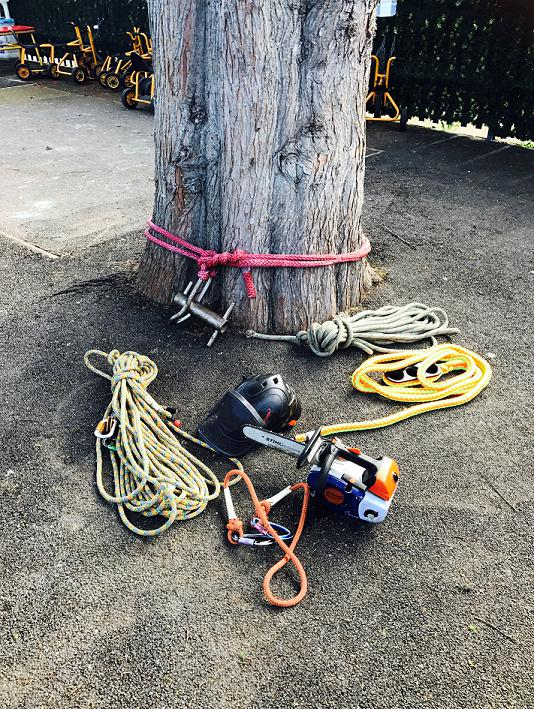 Image 19 - Some of the Equipment we use to carry out our tree work!