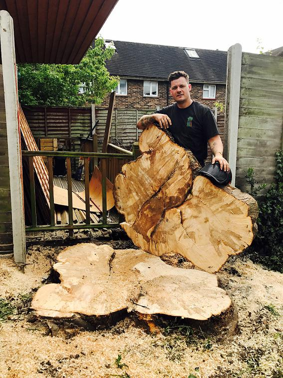 Image 22 - This was a Sycamore stump that we had to completely remove!