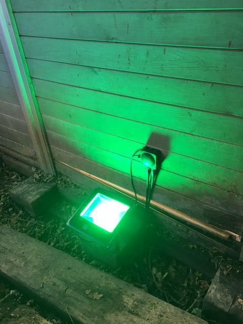 Image 15 - Green LED garden light