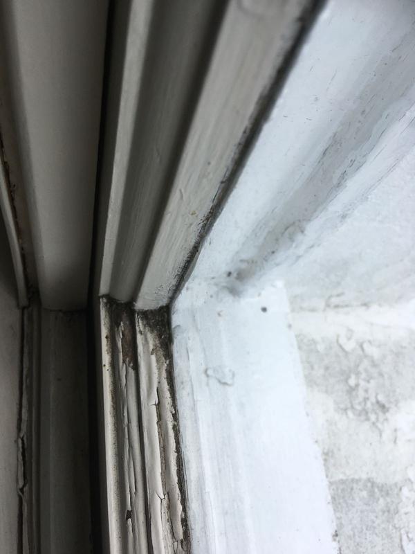 Image 26 - Blistered windows