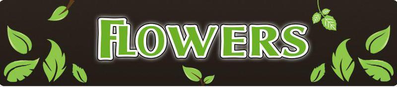 Flowers Landscape Gardening Ltd logo