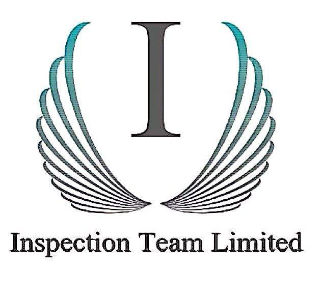 Inspection Team Limited logo