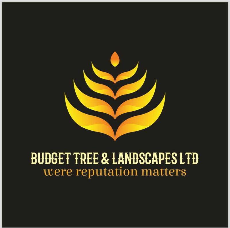 Budget Tree & Landscapes Ltd logo