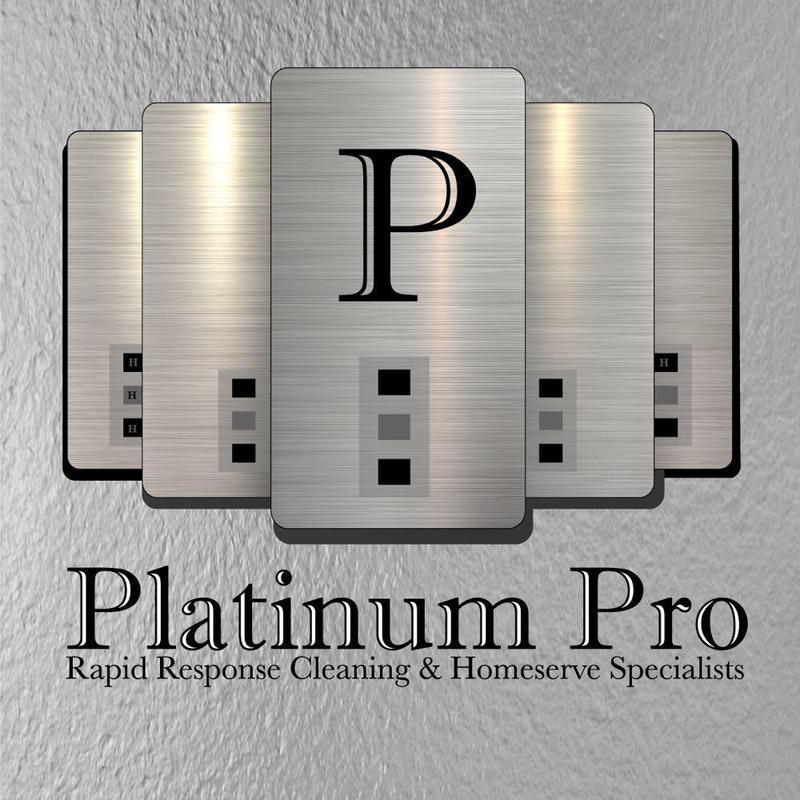 Platinum Pro logo