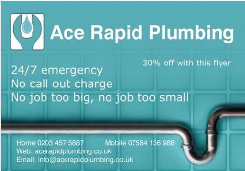 Ace Rapid Plumbing logo