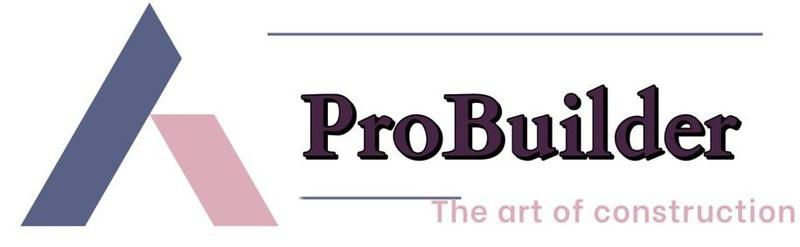 Probuilder London Ltd logo