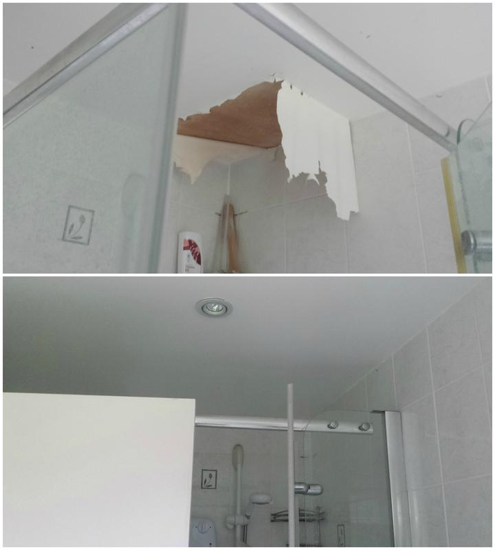 Image 101 - Repair to badly deteriorated ceiling paint.