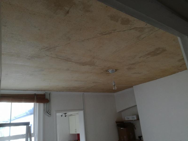 Image 58 - Ceiling plastered