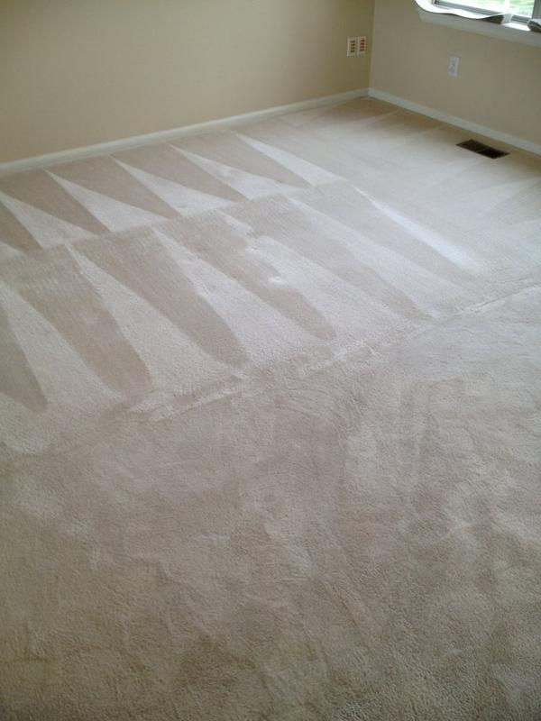 Image 32 - Carpet Cleaning Near Me