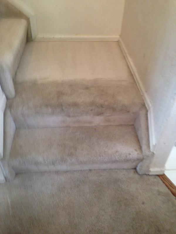 Image 33 - Carpet Cleaning