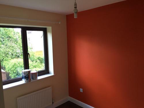 Image 3 - walls,ceiling and woodwork decorating