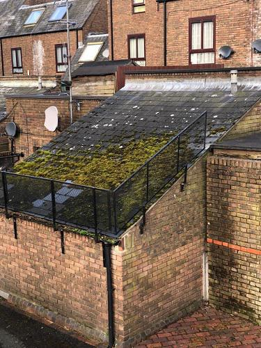 Image 9 - Old asbestos roof