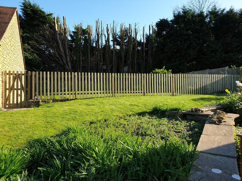 Image 193 - Picket fencing, Tanglewood
