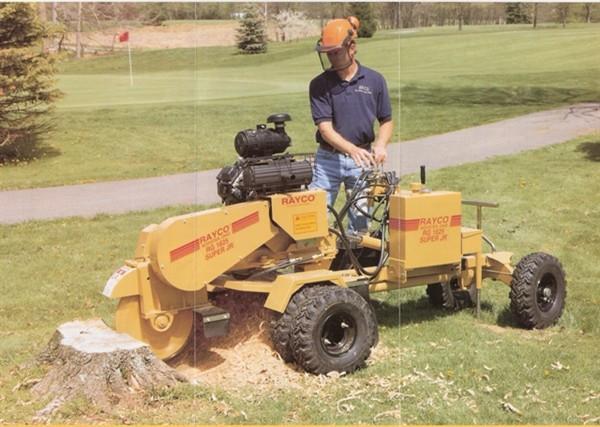 Image 18 - stump grinding